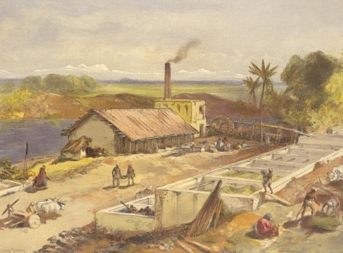An Indigo factory, Bengal, India 1867