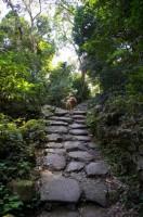 Boulder Road - Mui Tsz Lam to Mau Ping