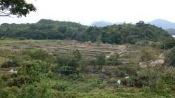 Abandoned salt field Yim Tin Tsai