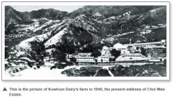 Kowloon Dairy image 1940