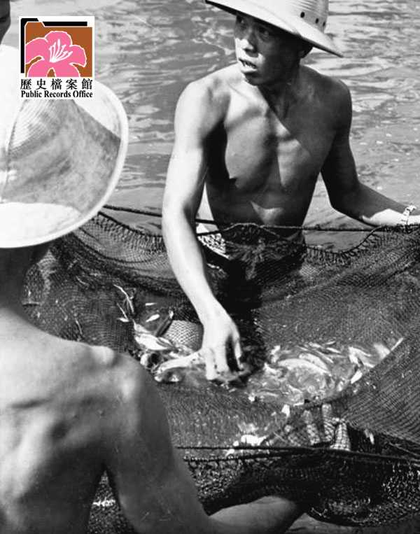 Fish Ponds 5 HK 1961 image