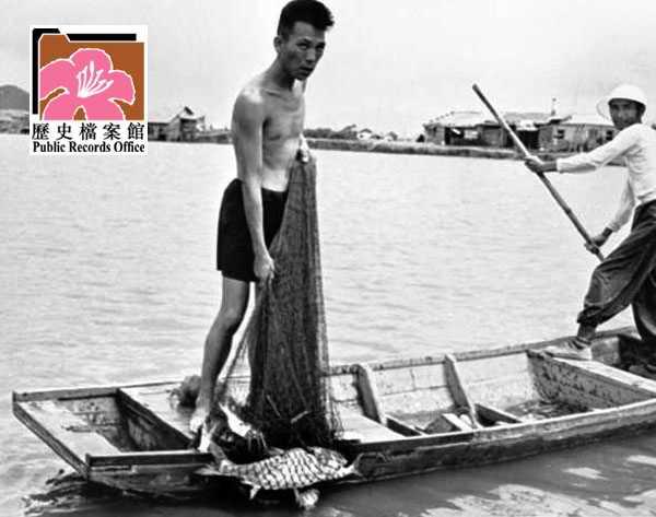 Fish Ponds 8 HK 1961 image