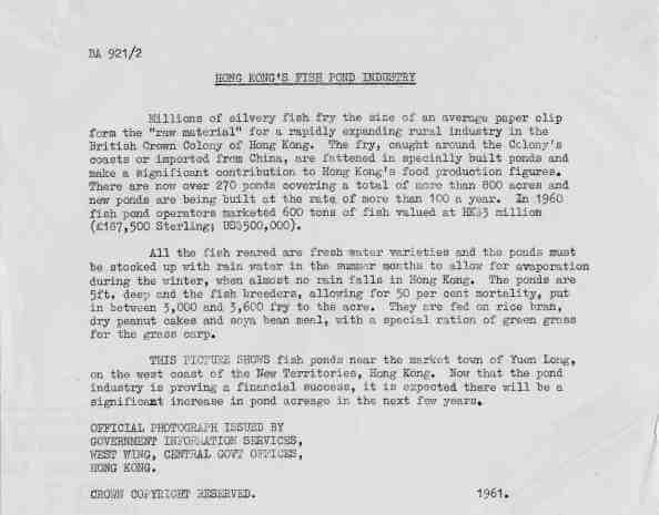 Fish Ponds HK 1961 text