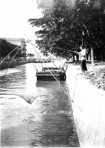 Bowrington Canal c1905  fom Guilford article