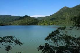 Shing Mun Reservoir general picture 2