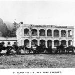 The German Speaking Community in Hong Kong 1846-1918 - Part Two
