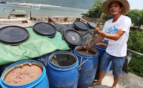 Shrimp Paste - Cheng Cheung Hing Shrimp image SCMP 17.9.14. b