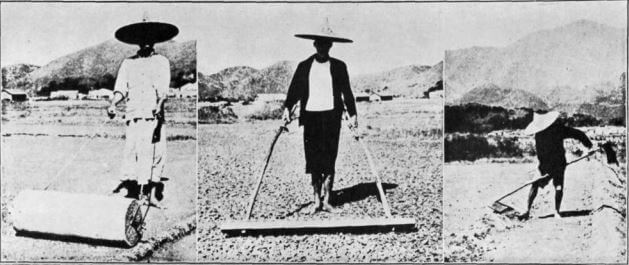 Salt Manufacture in HK 1967 RASHKB article a