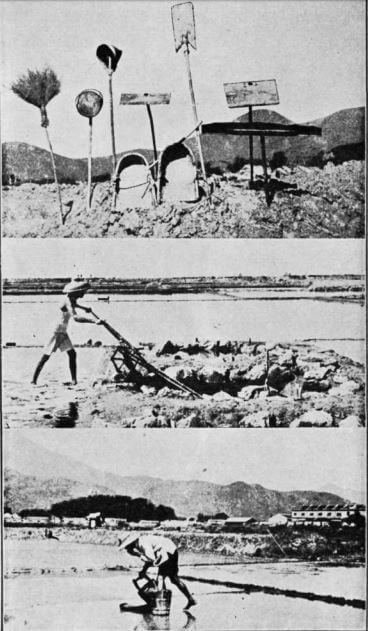 Salt Manufacture in HK 1967 RASHKB article b