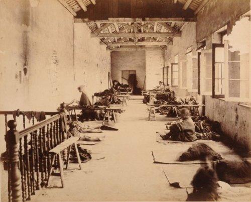 1894 Plague House