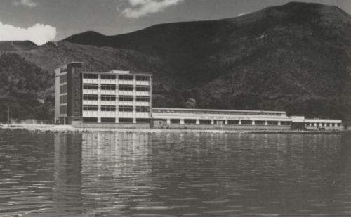 Tai Ping Carpet Factory Of Tolo Market 1960 HKHP