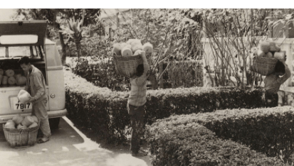 Tai Ping Carpets, Delivering Stock To Cheung Yuen Villa, 1960s, HKHP
