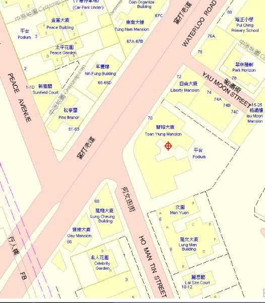 Tsan Yung Mansions A Centamap