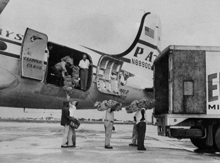 Pan Am Clipper Cargo DOUGLAS Dc 4 Loading Bananas Courtesy Pan Am Historical Foundation