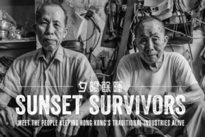 Sunset Survivors Book Cover Detail