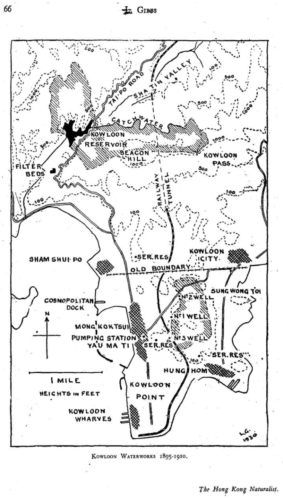 1910 GIBBS Map