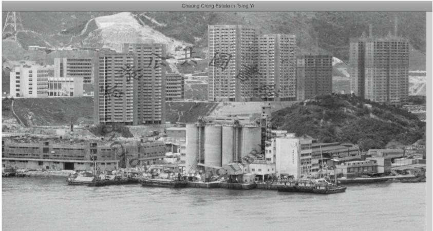 Hong Kong Cement Manufacturing Image 7 York Lo